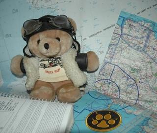 Le copain pilote