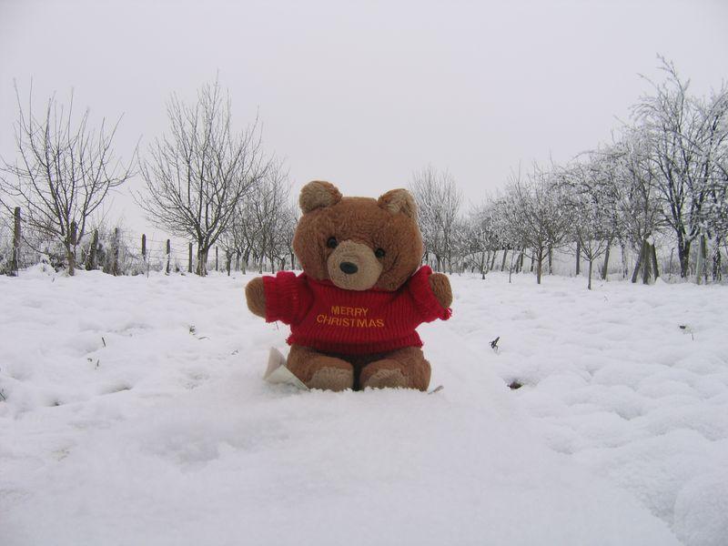 Hannawa en Roumanie - la neige